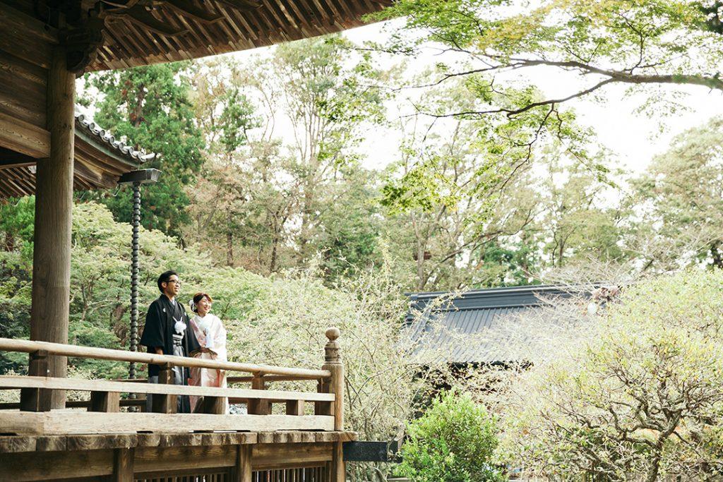 鎌倉 妙本寺 前撮り